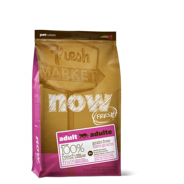 NOW FRESH ADULT - Crocchette Gatto Grain Free