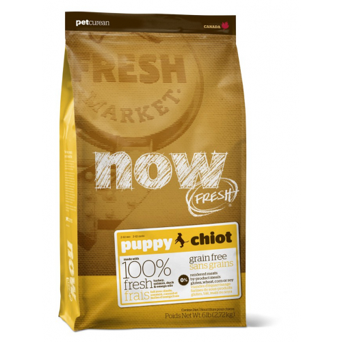 NOW FRESH PUPPY - crocchette cane Grain Free