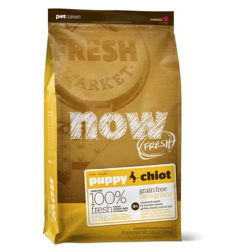 NOW FRESH PUPPY - crocchette cane Grain Free
