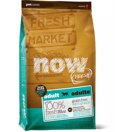 Now Fresh Adult Large Breed - crocchette cane Grain Free