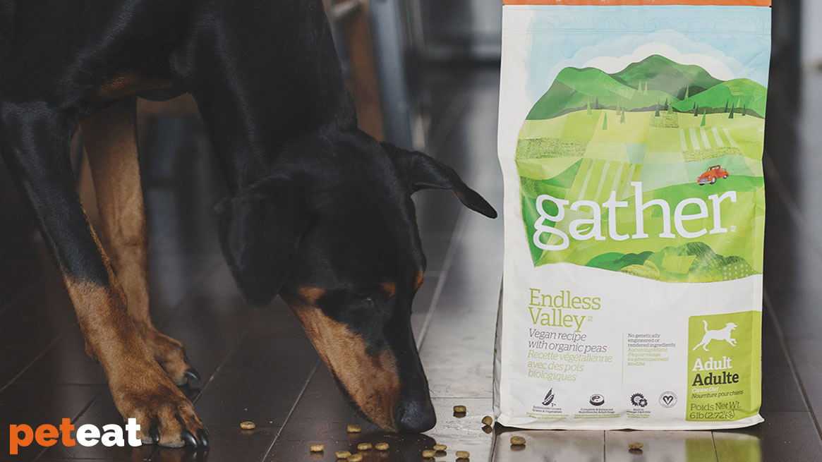 "Petcurean lancia Gather  ""Endless Valley"", un cibo per cani vegani!"